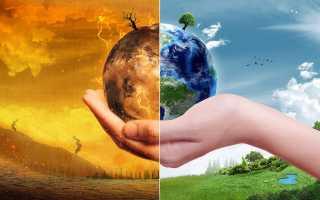 Экологические проблемы в биосфере