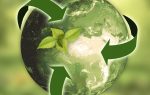 Виды и правовые основы экологического нормирования