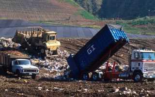 Загрязнение почвы как экологическая проблема