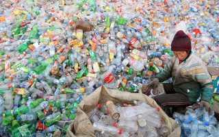 Сколько разлагаются различные виды мусора?