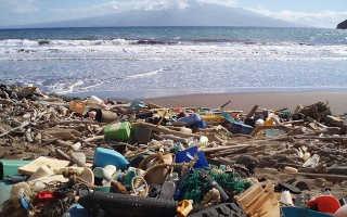 Общее экологическое состояние вод морей Российской Федерации