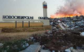 Основные проблемы загрязнения окружающей среды в Новосибирской области