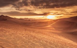 Экологические проблемы пустынь и полупустынь и пути их решения
