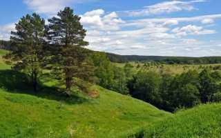 Экологические проблемы Восточно-Европейской равнины и пути их решения