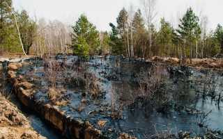 Химическое загрязнение окружающей среды