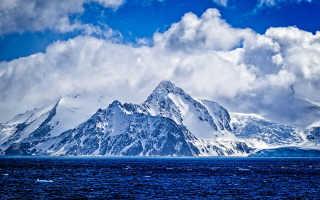 Экологические проблемы Антарктиды