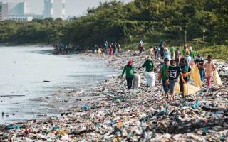 Экологические проблемы Индии и пути их решения