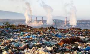Загрязнение окружающей среды как экологическая проблема