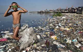 Экологическая проблема мусора и утилизации отходов в мире