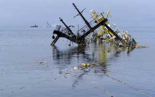 Экологические проблемы Охотского моря и пути их решения
