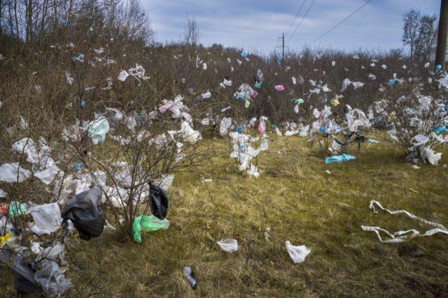 Пластиковые пакеты на деревьях