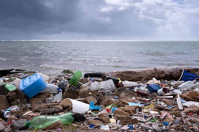Скопление твердых отходов