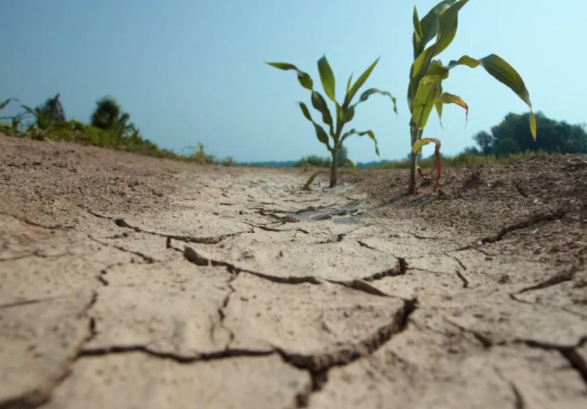 Экологические проблемы в строительстве и пути их решения